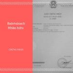 Nhãn hiệu Balotuixach đã được bảo hộ độc quyền