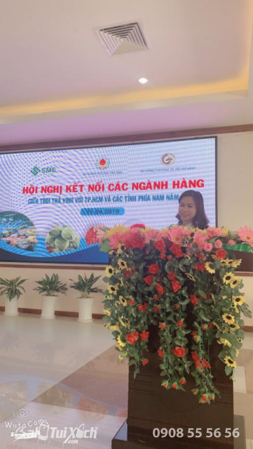 Doanh nhân Thu Sương tại sự kiện hội nghị Kết nối các ngành hàng chủ lực của Trà Vinh với Thành phố Hồ Chí Minh và các tỉnh phía Nam