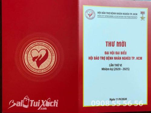 Doanh nhân Thu Sương tại Đại hội Đại biểu Hội Bảo trợ Bệnh nhân Nghèo TP.HCM lần thứ VI nhiệm kỳ (2020 - 2025) - Ảnh: 6
